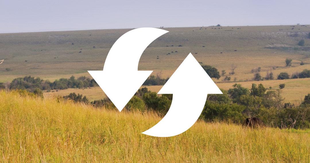 Sustainability symbol