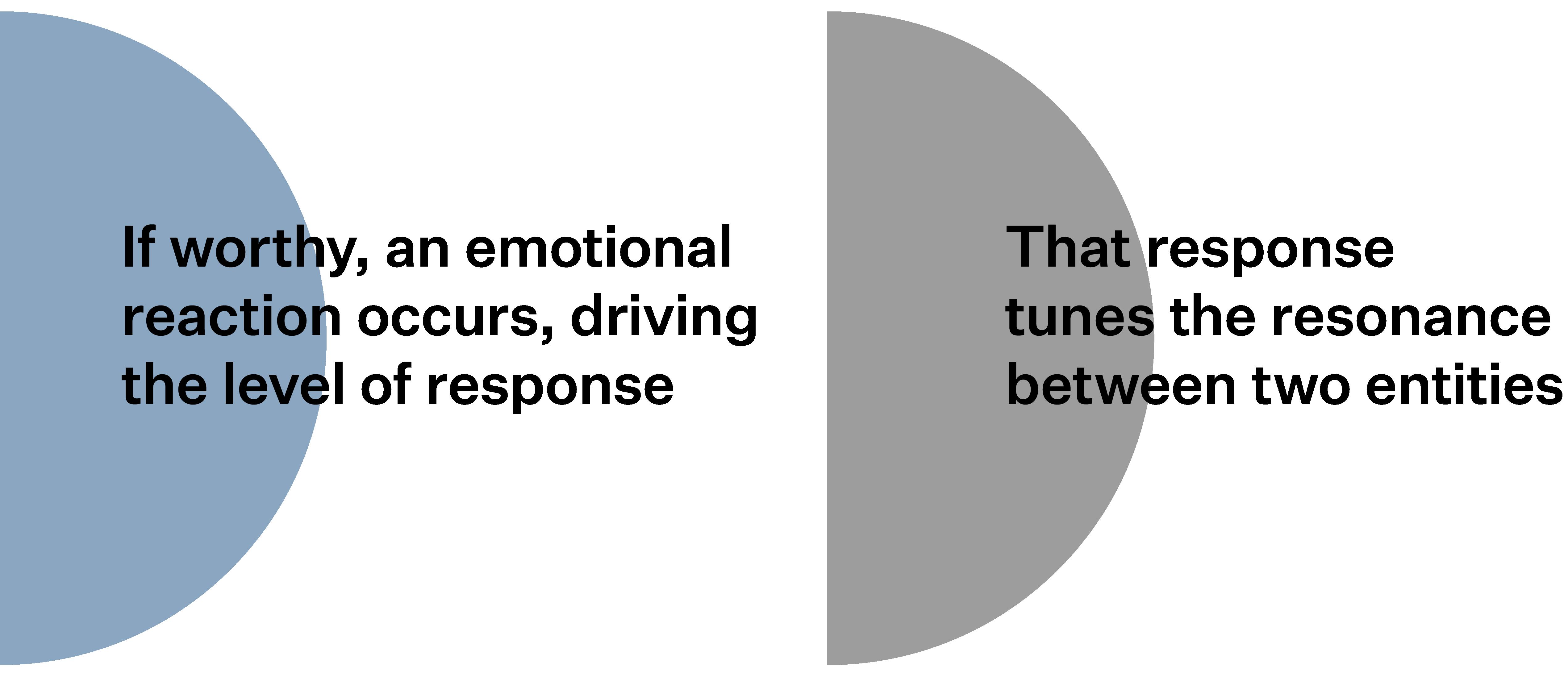 Sensory Journey