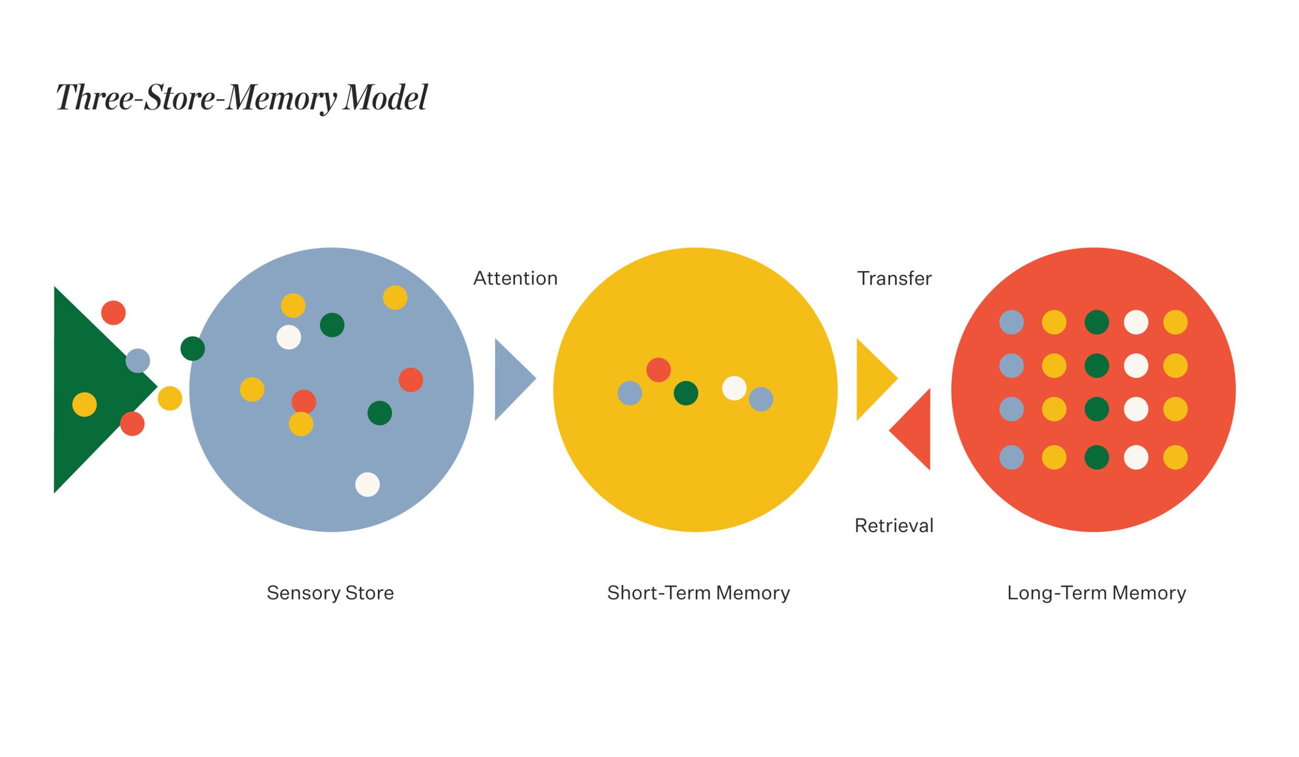 Three-Store-Memory Model