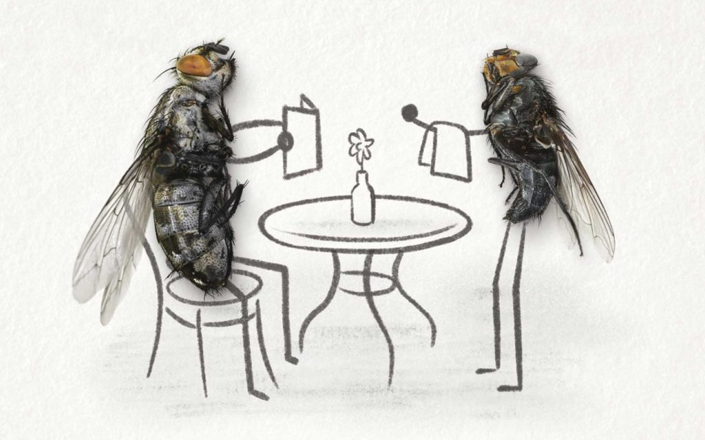 A fly sitting at a cafe table ordering from a waiter fly.