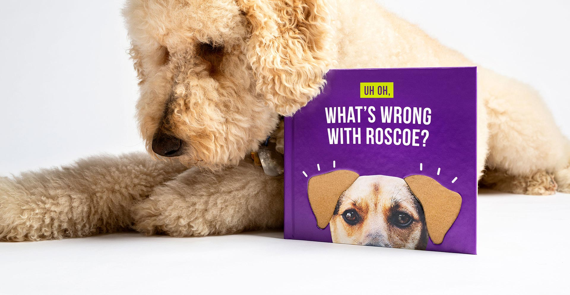 Fluffy golden doodle with book featuring dog with diecut ears