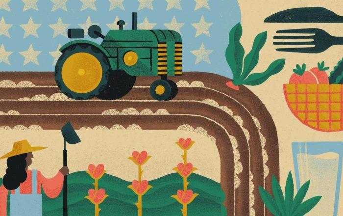 Agribusiness Illustration Collage