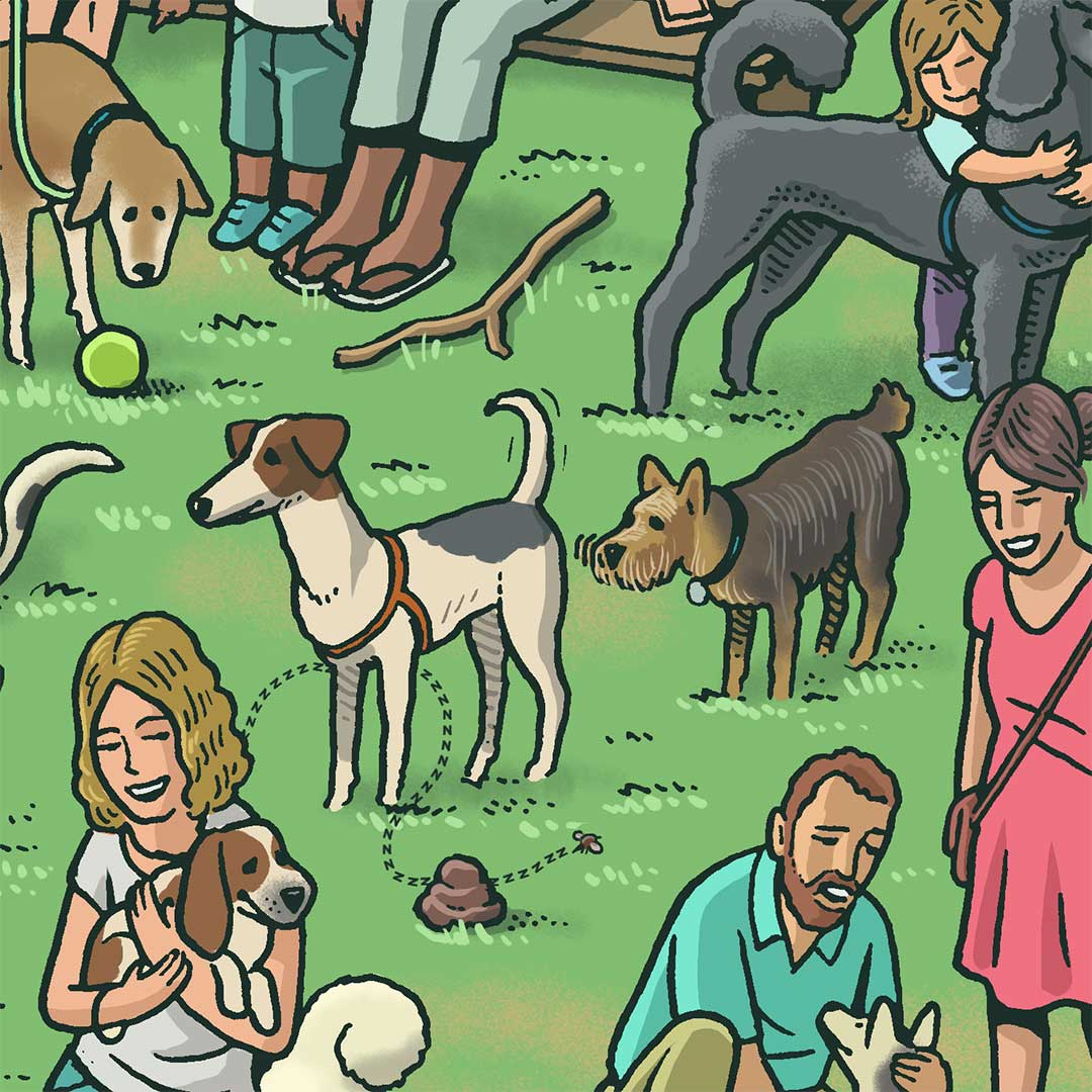 Illustration of dogs mingling in park. Dog in center sniffs another's rear-end.
