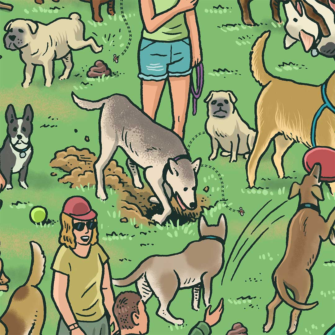 Illustration of dogs mingling in park. Dog in center digs a hole..