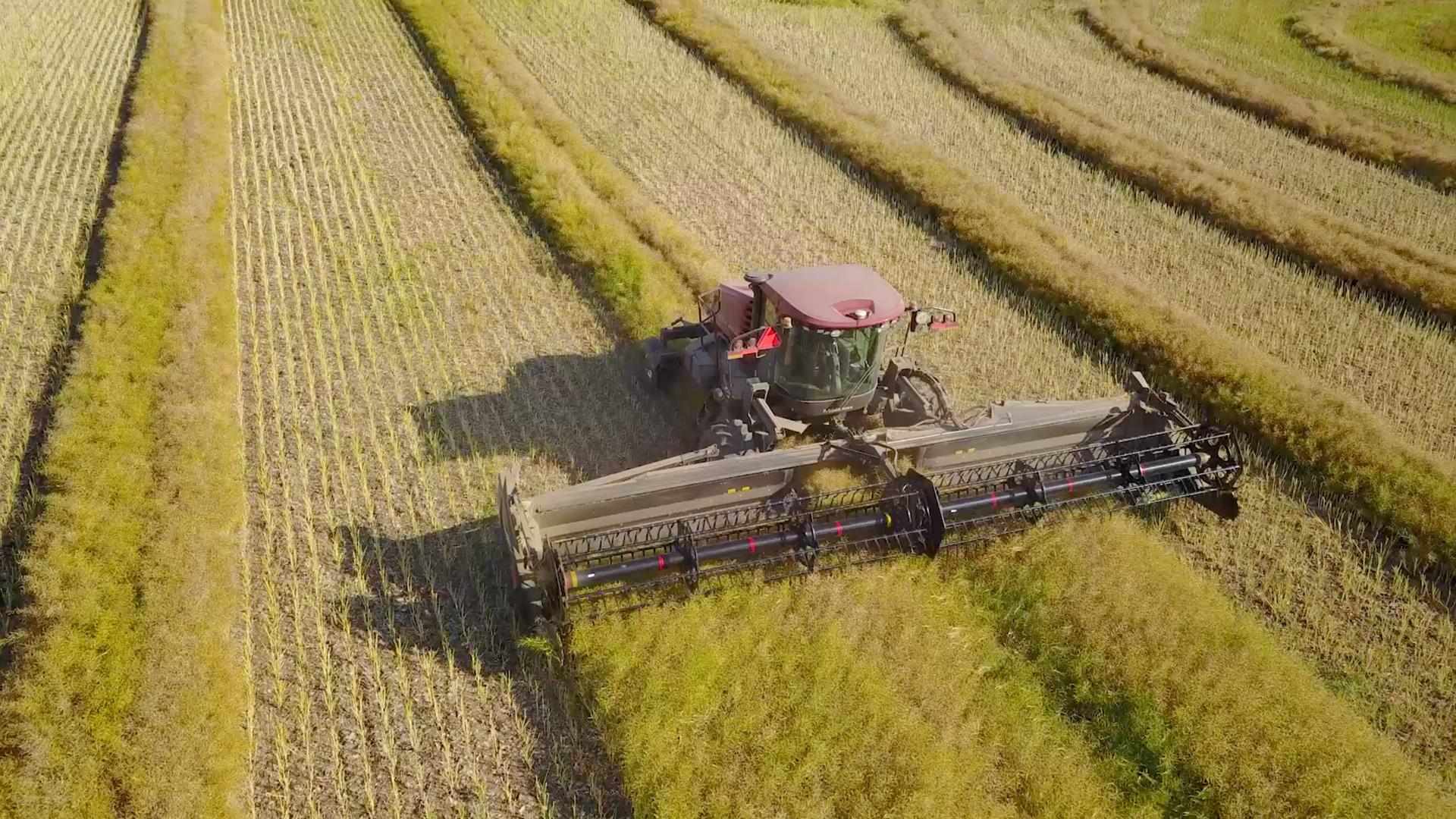 360˚ view of farm