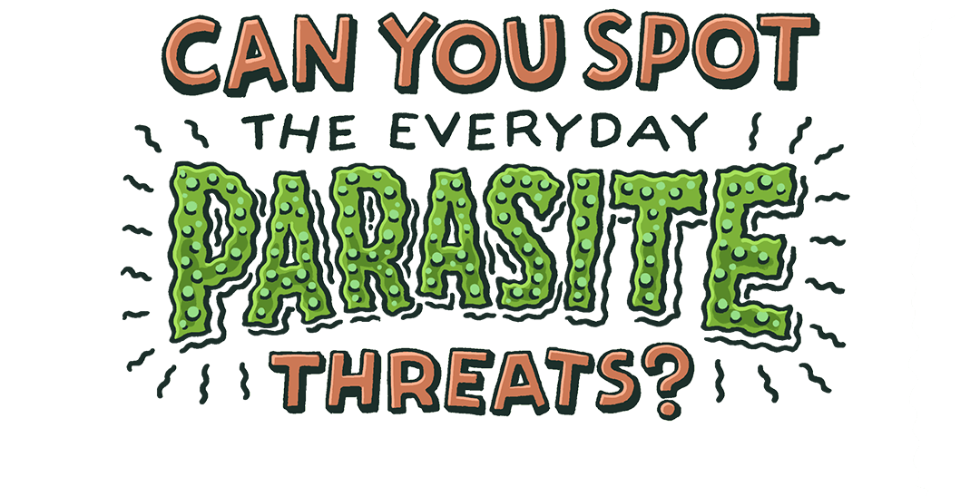 Can you spot the everyday parasite threats?