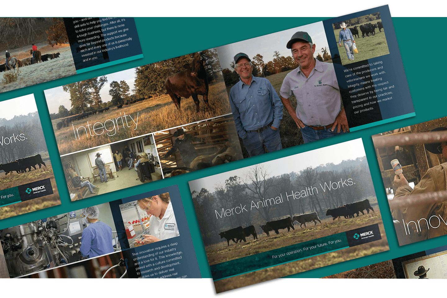 Merck Animal Health Cattle Brochure