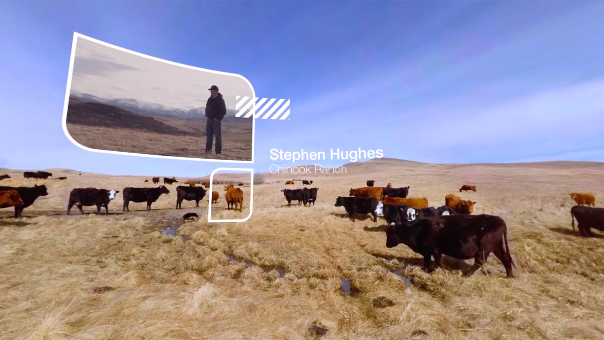 Cargill 360 Degree VR Experience