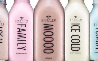 Five bottles of different Shatto Milk flavors with large type saying: LOCAL, FAMILY, MOOO, ICE COLD and YUMMY.