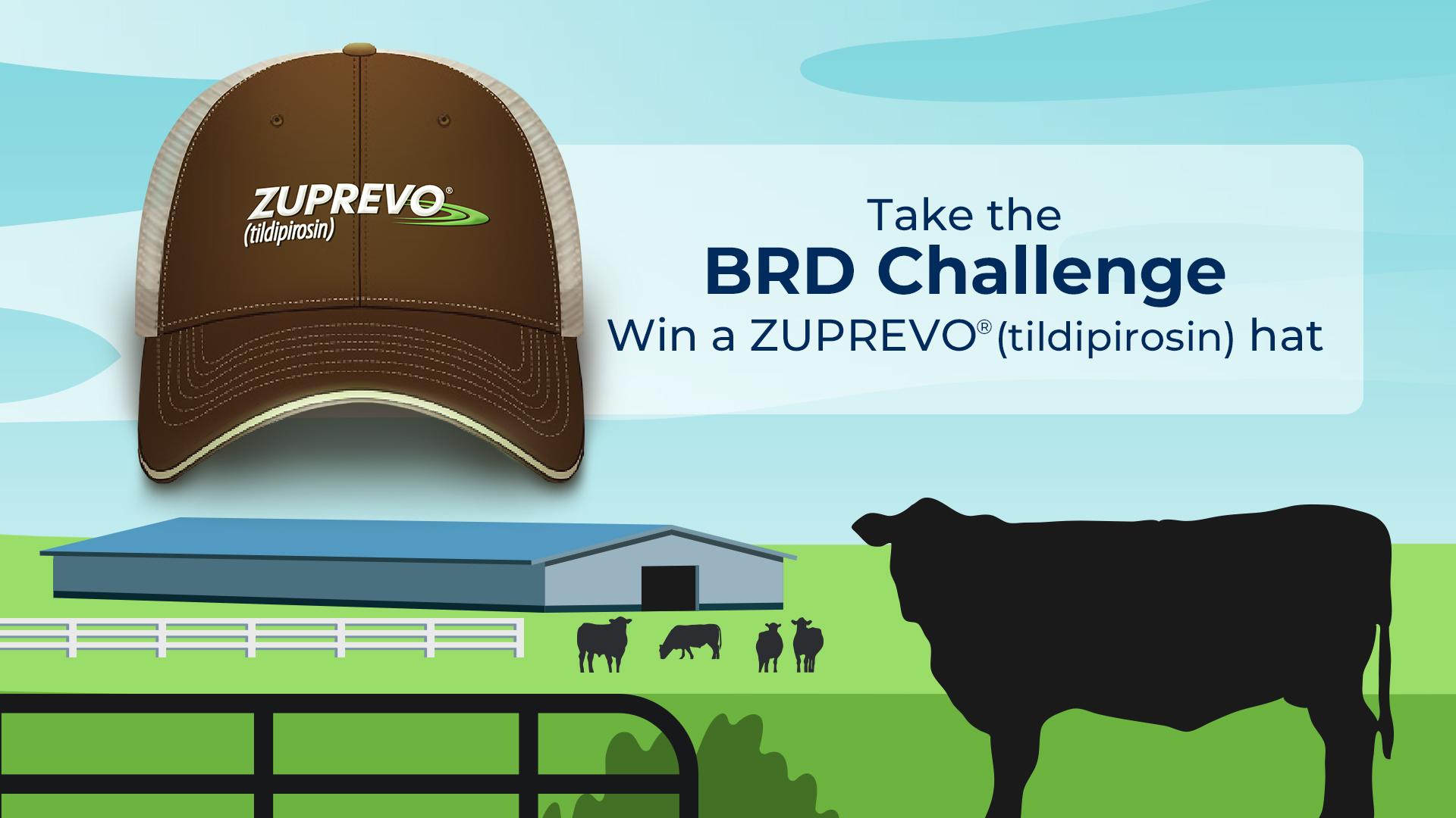 Take the BRD Challenge